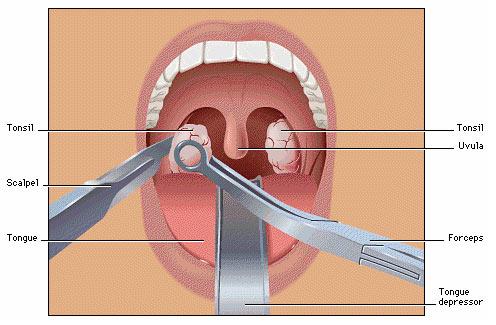Welcome to Dr.Thakkar's Dental & ENT Hospital